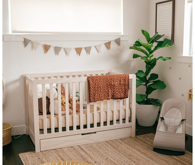 Augie Nursery Reveal